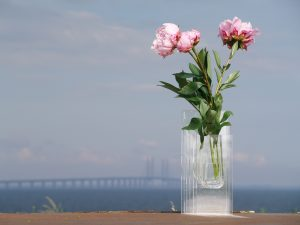Vase plexiglas